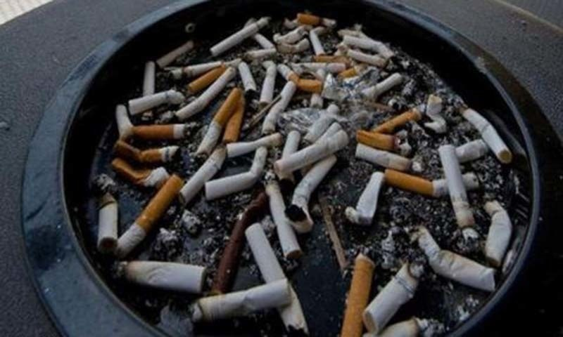 A Senate committee recommends a review of the taxation mechanism on export of tobacco.— AFP/File