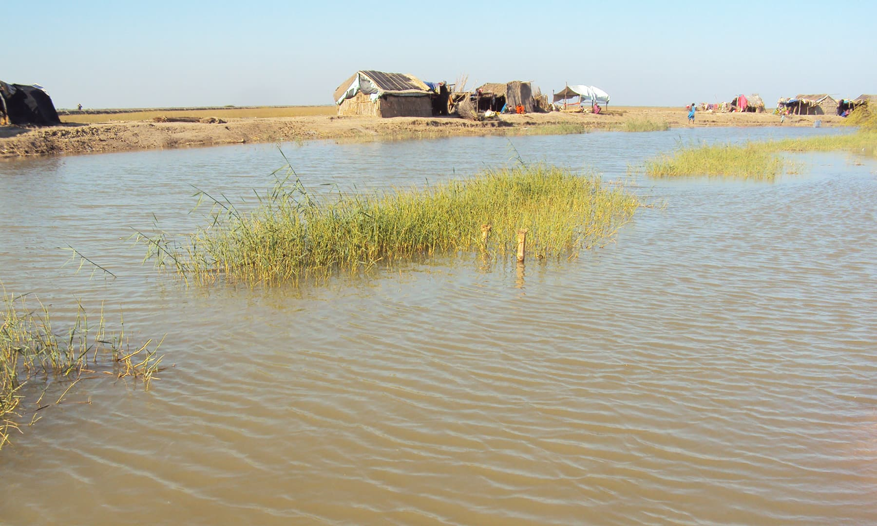 نریڑی جھیل کے قریب مچھیروں کے گھر—تصویر ابوبکر شیخ