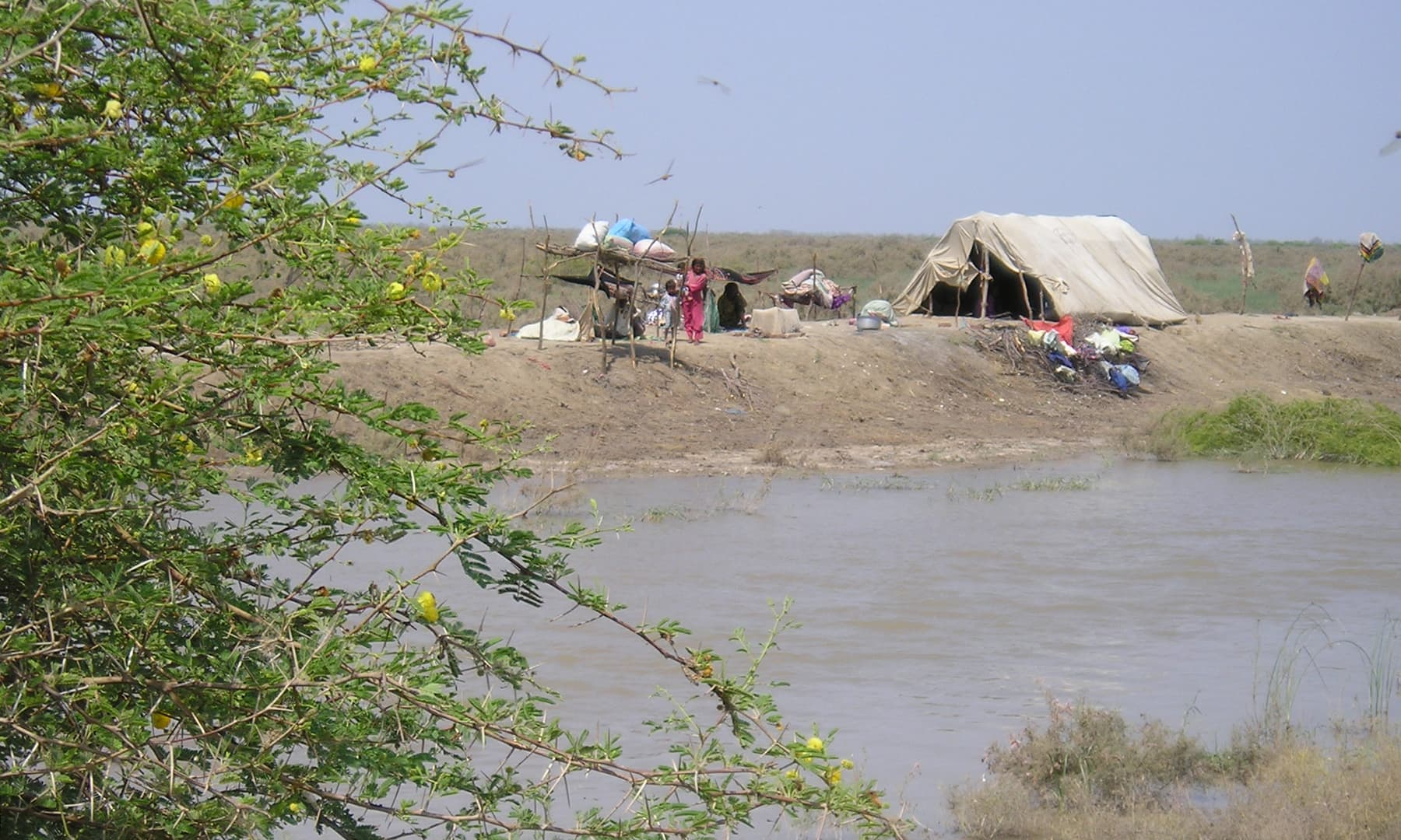 نریڑی جھیل کے قریب واقع مچھیروں کے گھر—تصویر ابوبکر شیخ