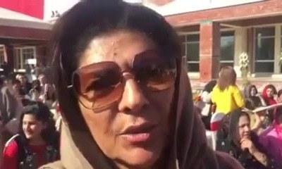 Aleema didn't avail herself of tax amnesty scheme, SC told