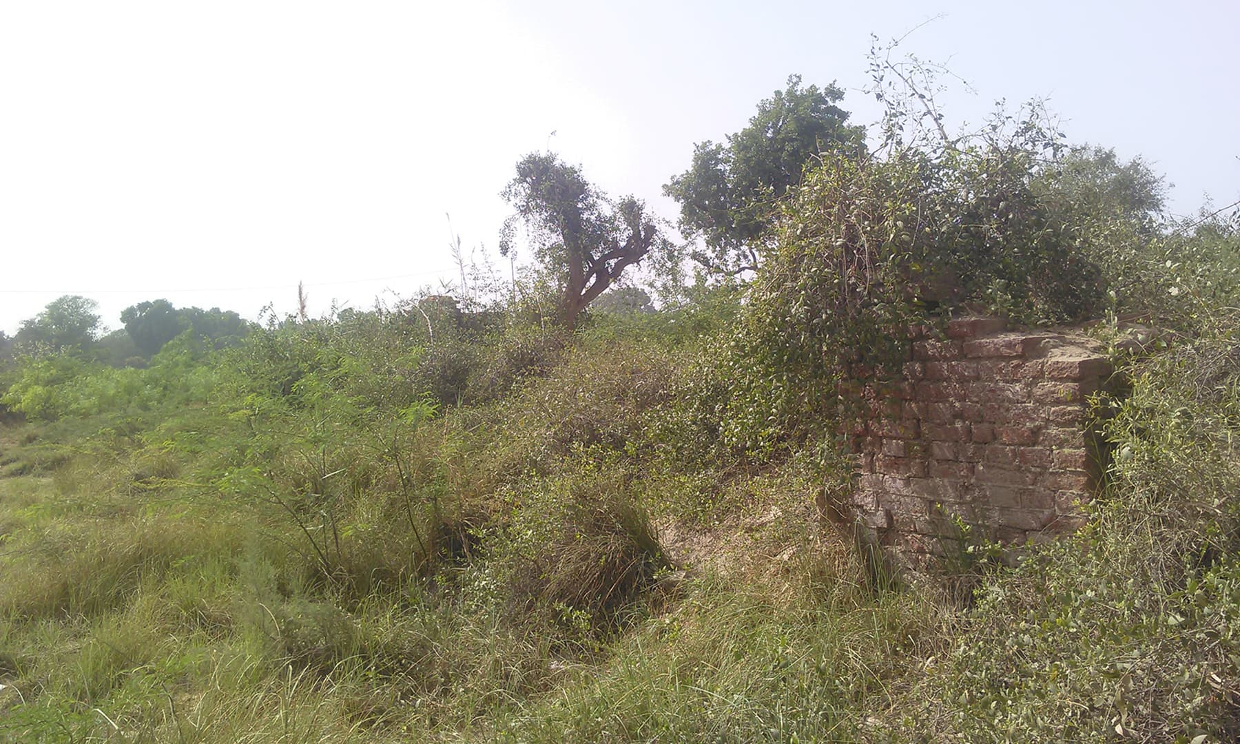 ہوسڑی میں واقع بنگلے کے آثار—ابوبکر شیخ