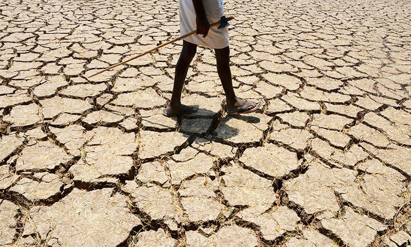 Over 109,000 families have been hit by continued drought in 20 districts of the province; compensation has been promised by the provincial government. —AFP/File