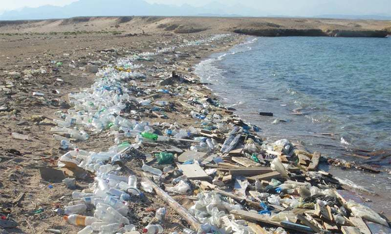 Environmental campaigners have been calling for curbs on throwaway plastic that's accumulating in the oceans. — File