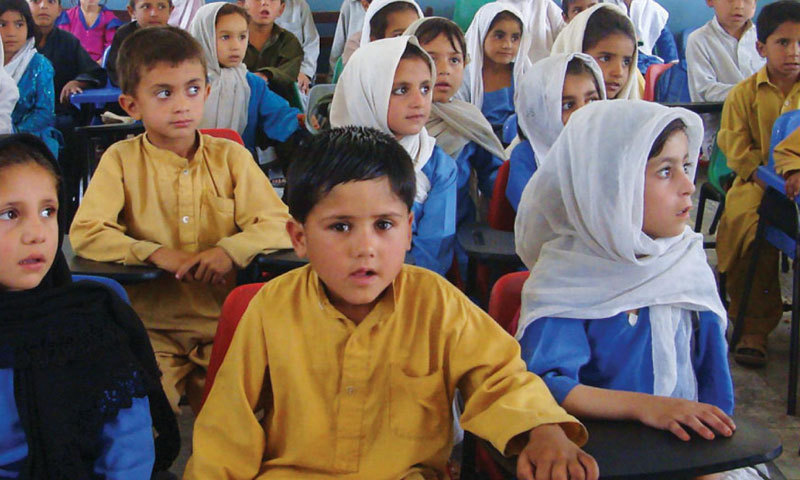 Shafqat Mahmood says the literacy rate in the country was only higher than that of Afghanistan in the region. — File photo