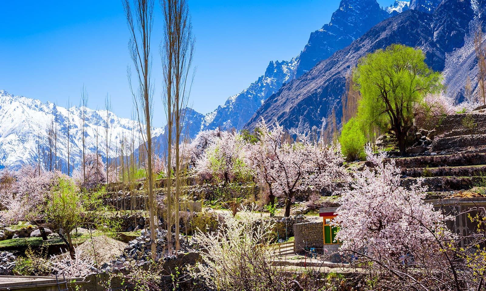 موسم بہار میں وادی ہنزہ کچھ اس طرح کا منظر پیش کرتی ہے — شٹر اسٹاک فوٹو