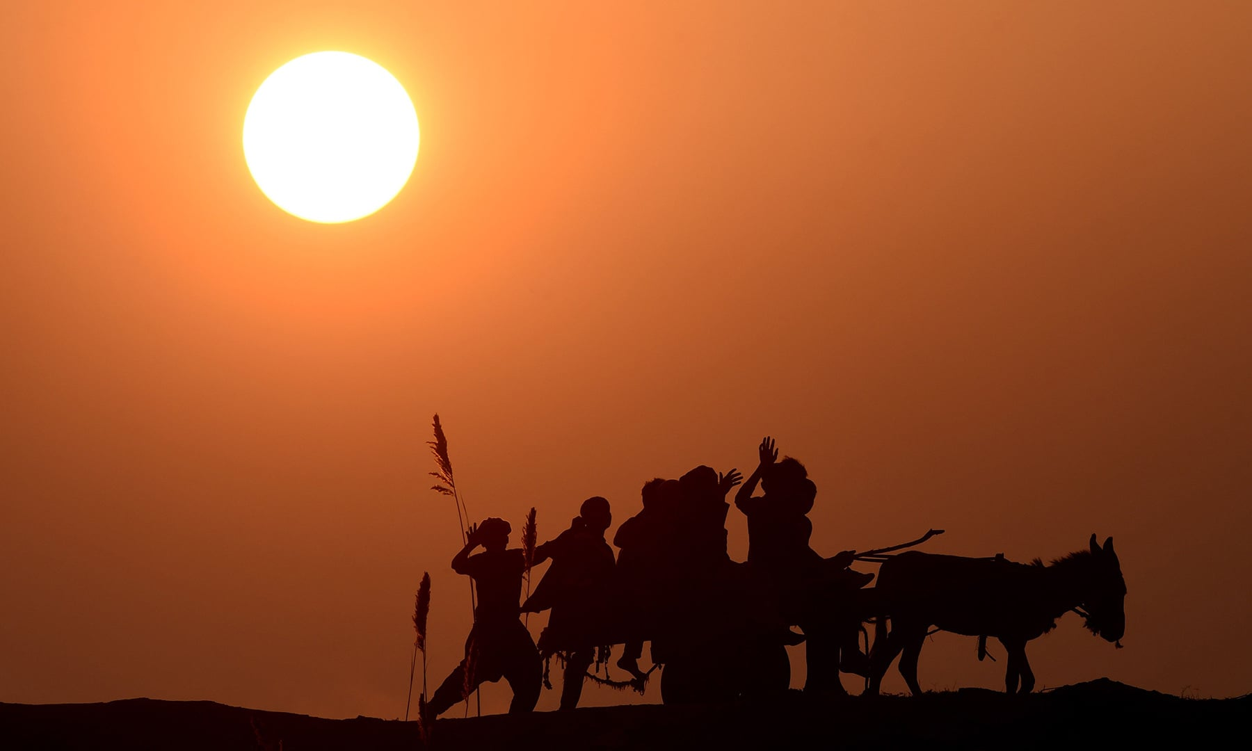 Labourers ride a donkey cart during the last sunset of 2018 in Lahore on December 31. — AFP