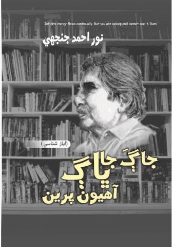 Shaikh Ayaz Books Pdf