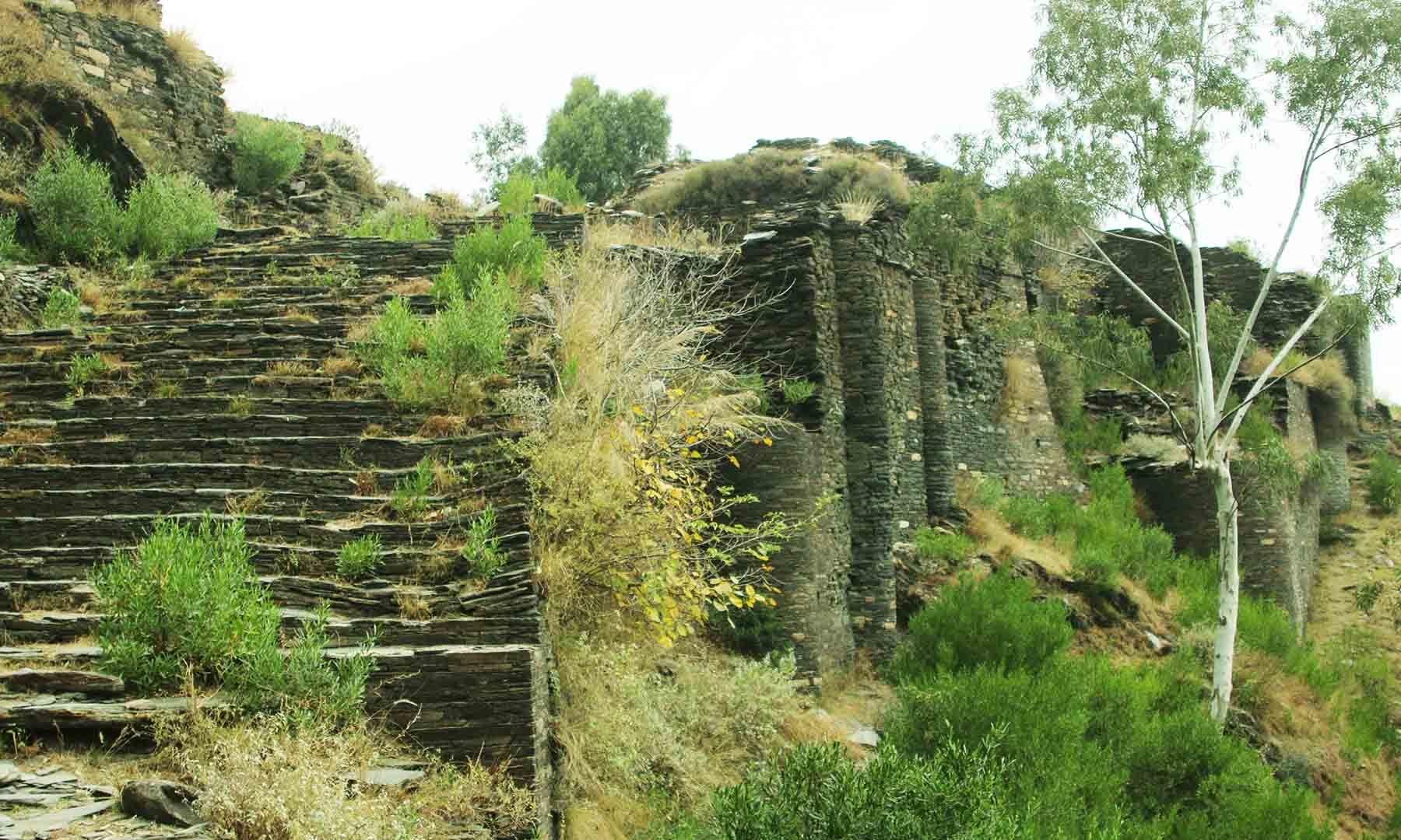 راجا گیرا کا قلعہ