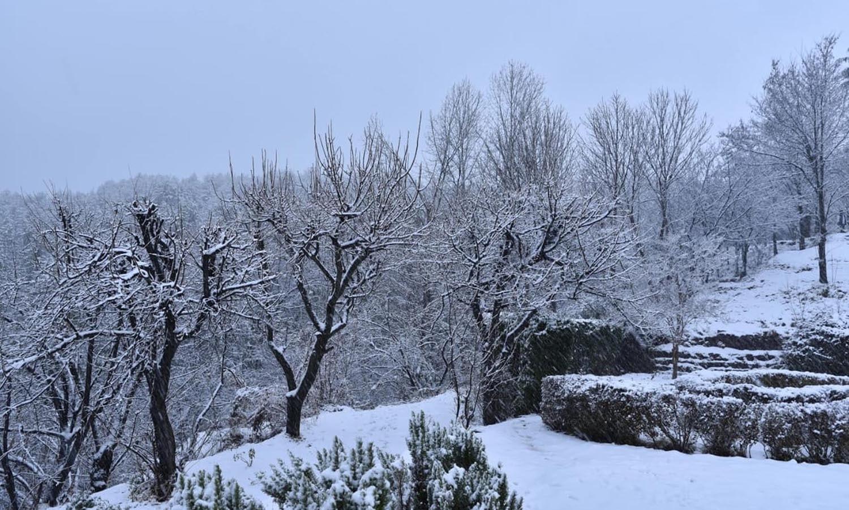 مری میں بھی ہلکی برف باری سے سردی کی شدت بڑھ گئی — فوٹو: اے ایف پی