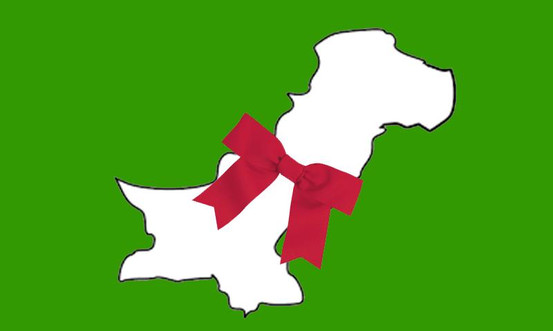 یہ نیا پاکستان ہے سو اب ہماری علامتیں اور نشانات بھی نئے ہونے چاہئیں۔— خاکہ ایاز احمد لغاری