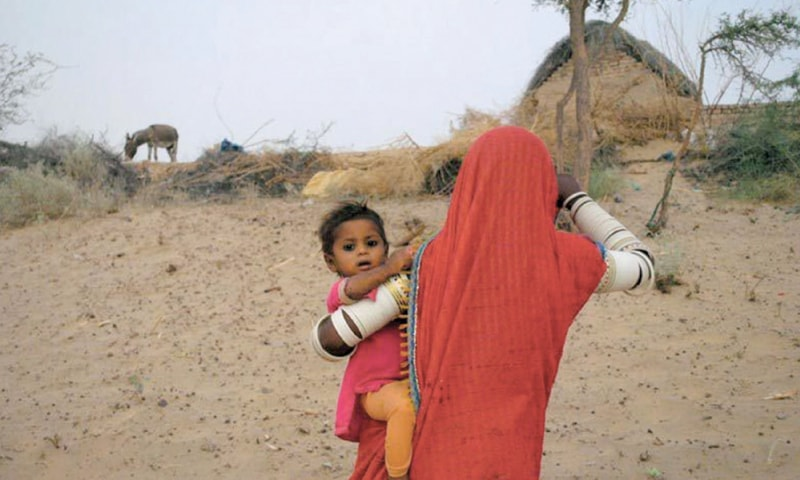 Sindh should take a leaf from Punjab's book to fight drought