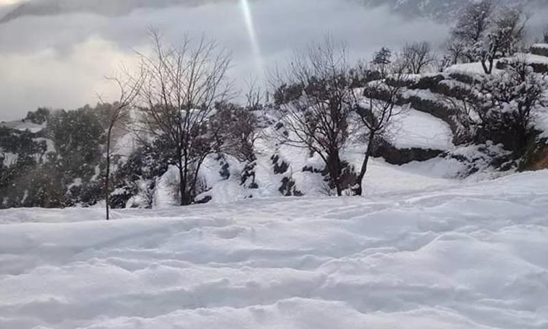 وادی چغرزئی میں اس بار سیاحوں کی تعداد کم ہے، جس کی وجہ بنیادی سہولیات کی عدم دستیابی ہے—تصویر نصیب یار چغرزئے