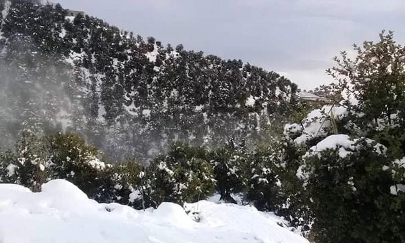 درختوں اور پہاڑوں پر برف دیکھی جاسکتی ہے—تصویر نصیب یار چغرزئے