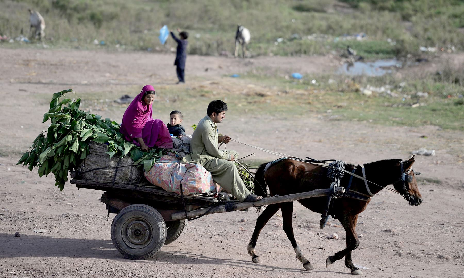 An Afghan refugee family rides on a horse cart at a refugee camp located just outside Islamabad. — AFP