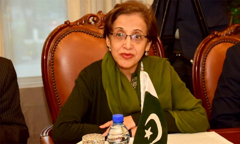 Foreign Secretary Tehmina Janjua pictured during her meeting with the US special envoy at the Foreign Office. — Photo courtesy: FO