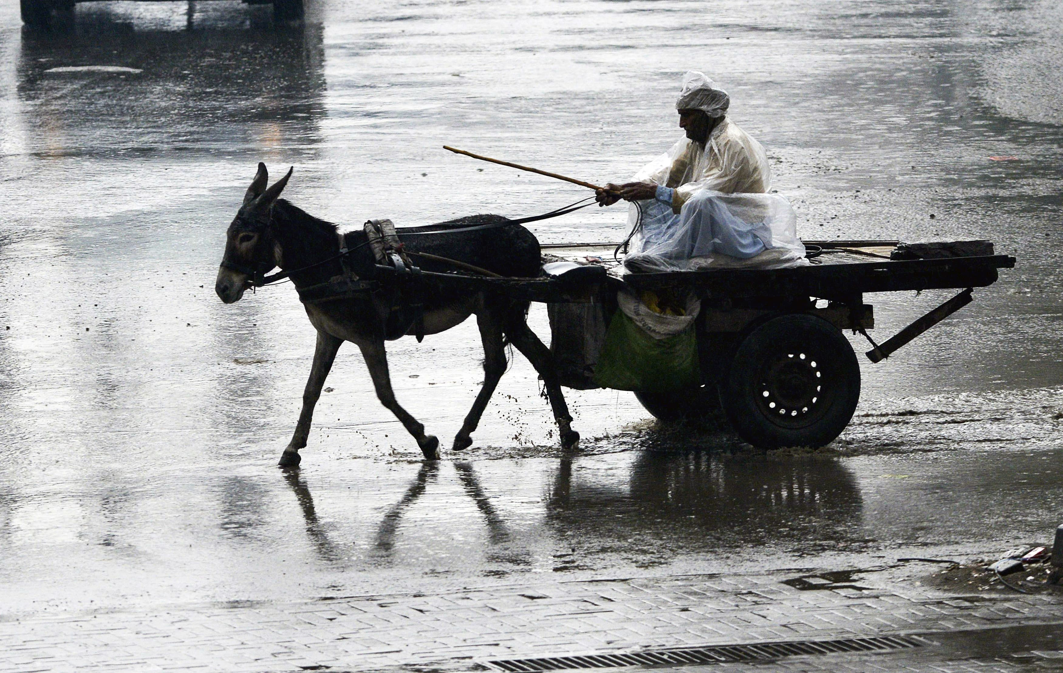 A Pakistani man rides on his donkey cart across a flooded street during heavy rain in Lahore on January 21, 2019. (Photo by ARIF ALI / AFP) — AFP or licensors