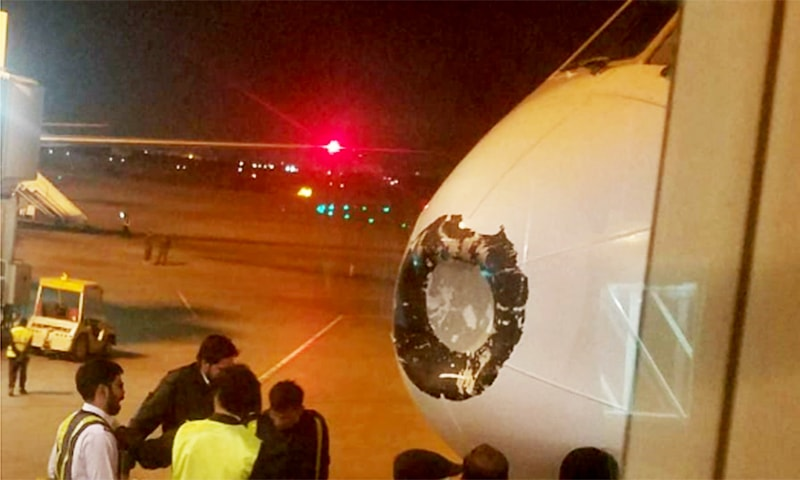 The nose of the aircraft damaged due to the bird strike. — Photo by author