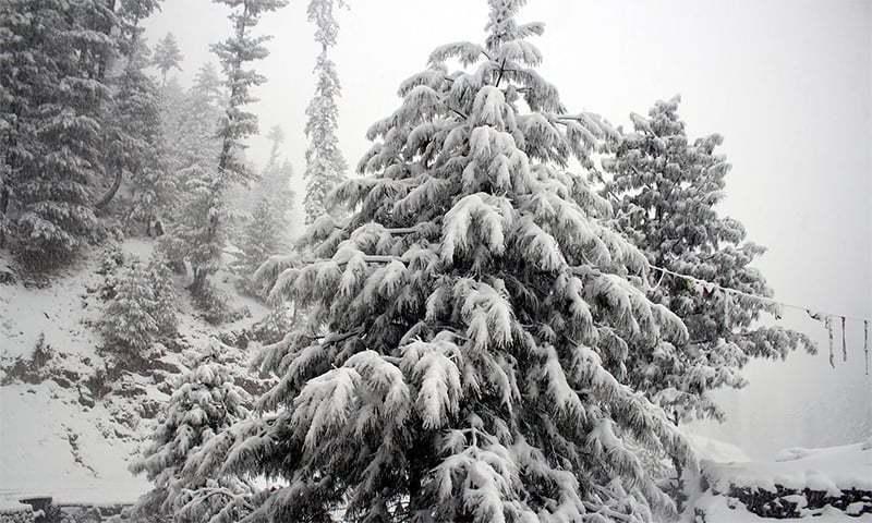 ایک مزدور کے رشتہ دار کا کہنا تھا کہ 15 فٹ برف پڑی ہے—فائل/فوٹو:ڈان