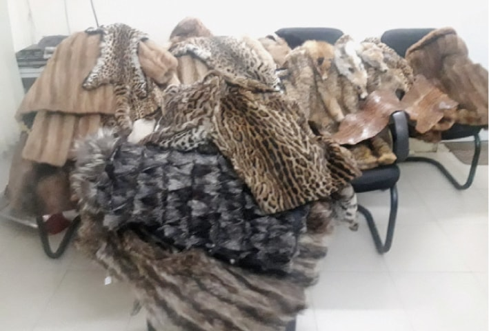 The confiscated jackets and other items made from animal fur. — White Star
