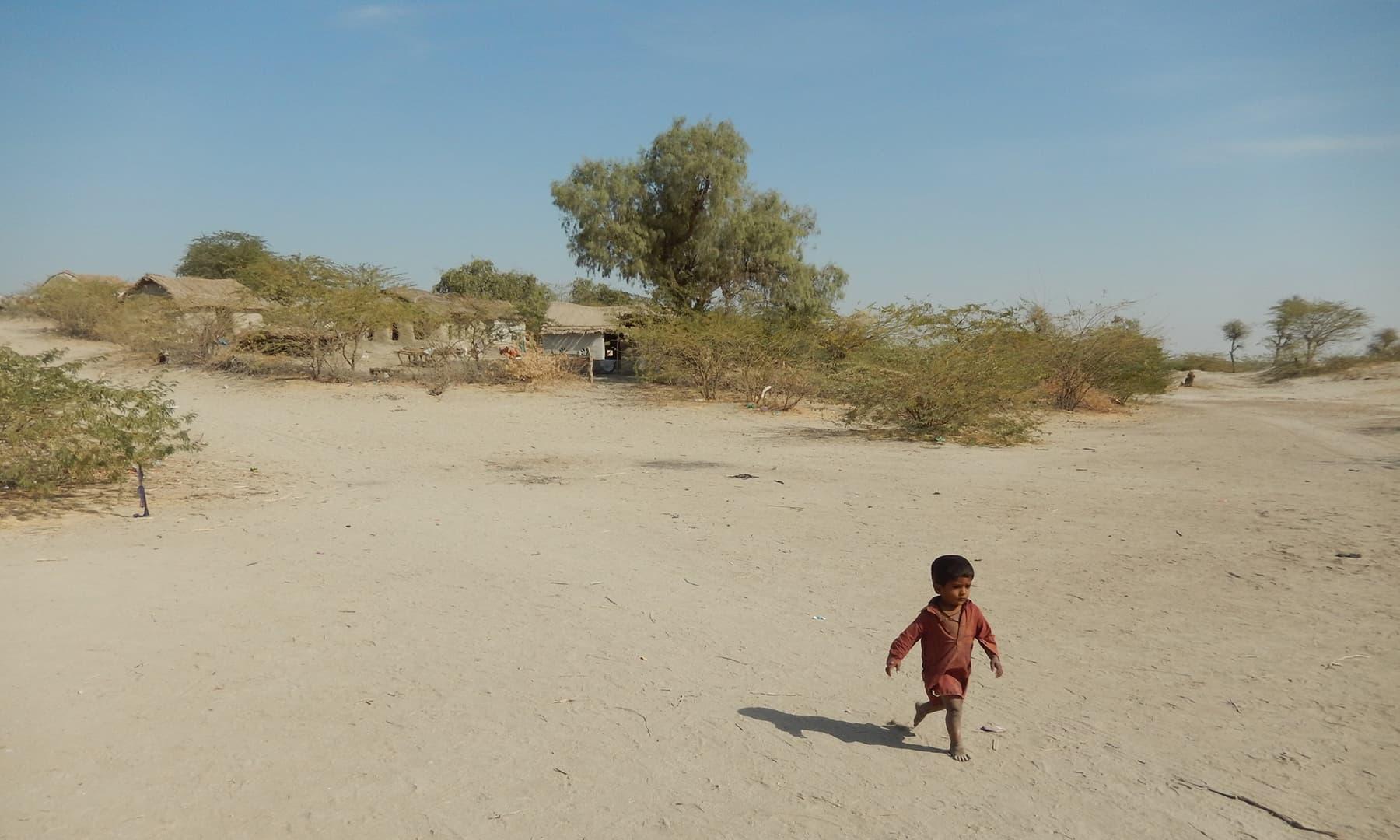 اچھڑو تھر جو 23 ہزار چورس کلومیٹر میں پھیلا ہوا ہے اس کی حدود عمرکوٹ سے شروع ہوکر سندھ کے گھوٹکی سے آگے پنجاب سے جا ملتی ہیں جہاں چولستان اس کو خوش آمدید کہتا ہے—تصویر ابوبکر شیخ