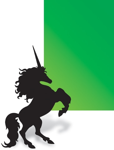 The quest for Pakistan's first unicorn - Recent - Aurora