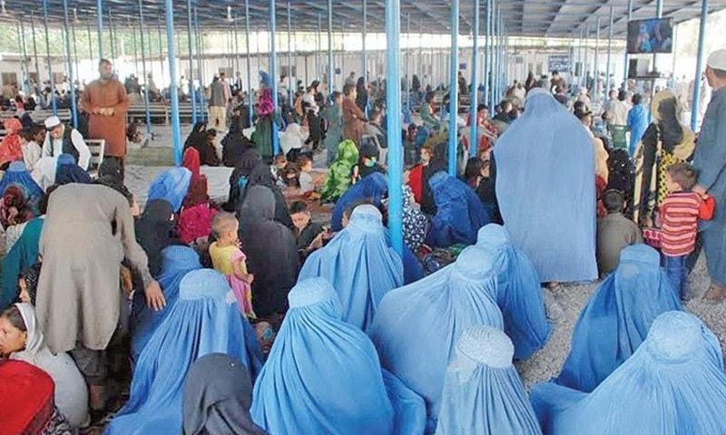 ہزاروں افغان شہریوں نے خود کو پاکستانی ظاہر کرکے شناختی کارڈ حاصل کیے—فوٹو: ڈان نیوز