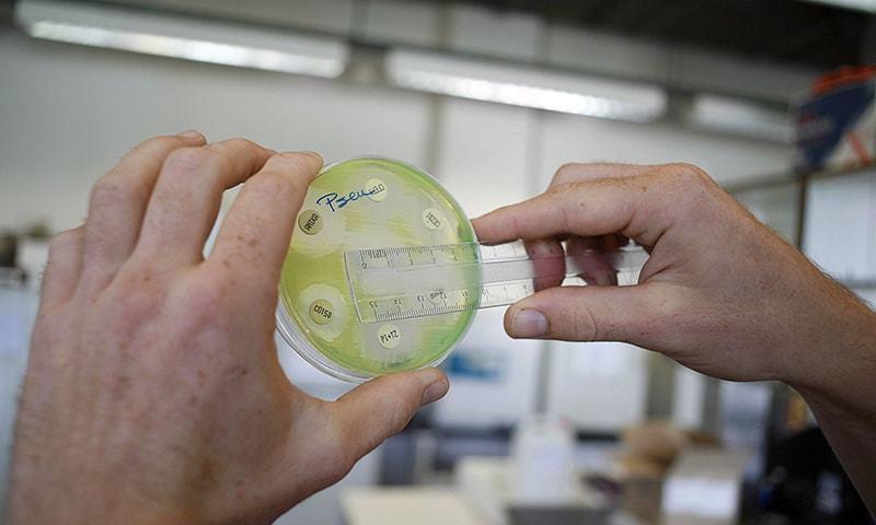 محکمہ صحت کے حکام کے مطابق اس ٹائیفائیڈ پر تھرڈ جنریشن اینٹی بائیوٹکس کا اثر نہیں ہوتا — فوٹو: اے ایف پی