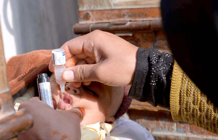 FAISALABAD: A lady health worker administers polio drops to a child on Monday.—APP