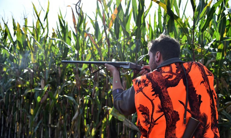 A hunter aims to shoot with his shotgun. — AFP/File