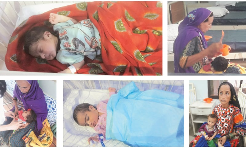 Malnutrition, especially in newborns and children up to five years, is a complex and multidimensional problem   Photos by the writer