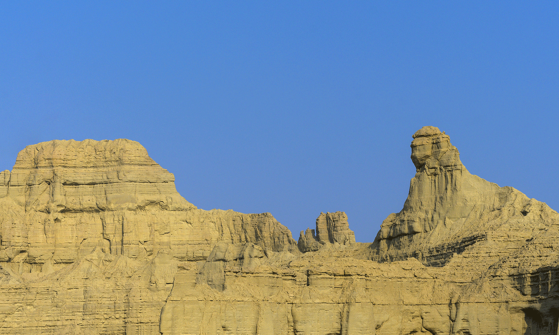 Hangul National Park - Syed Mehdi Bukhari