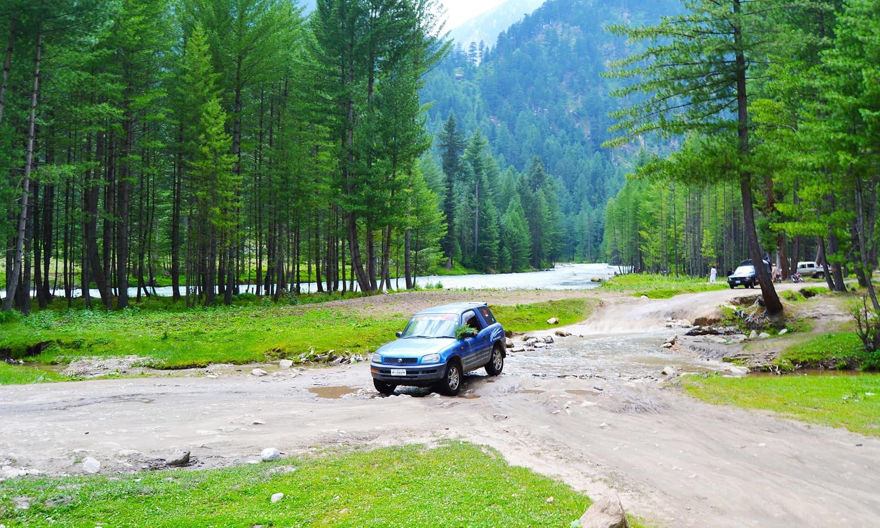 5 کلومیٹر سفر کرنے کے بعد ہم وادی کمراٹ کے خوبصورت جنگل میں داخل ہوئے—عظمت اکبر