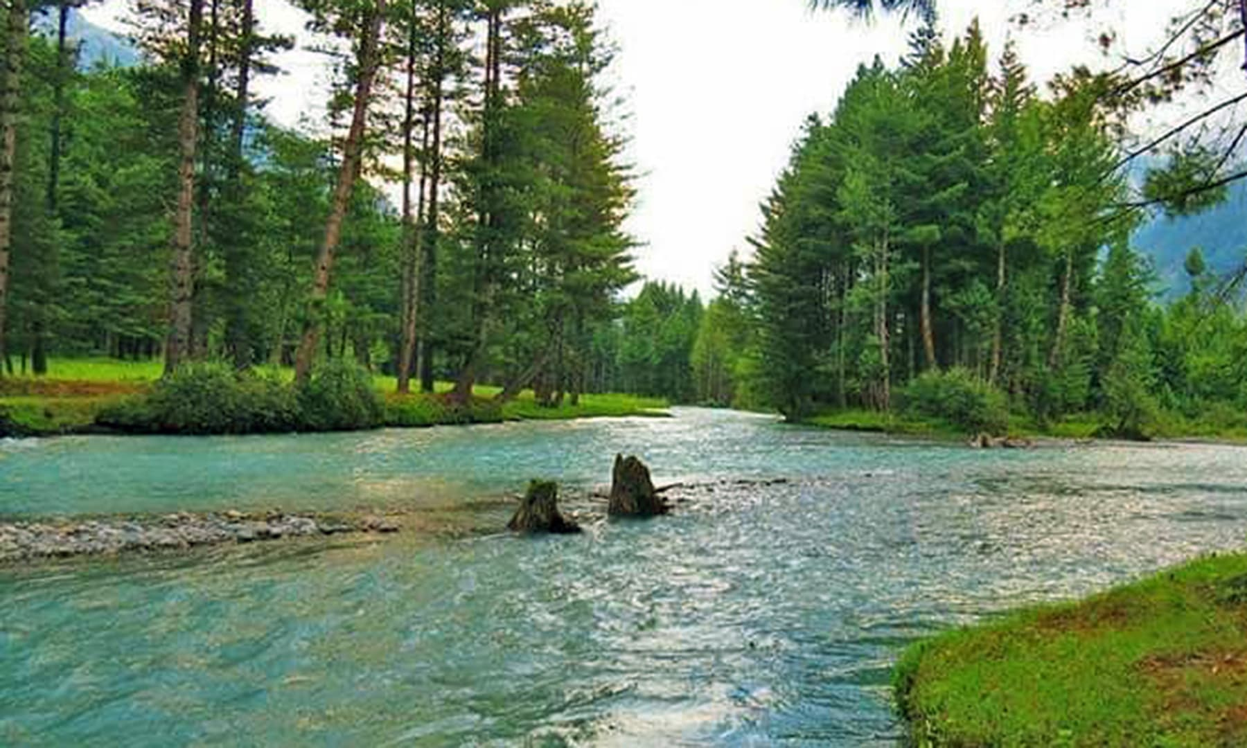 دو جنگہ، جہاں پر دو خوبصورت ندیاں مل کر دریائے پنجکوڑہ کی بنیاد رکھتی ہے—عظمت اکبر