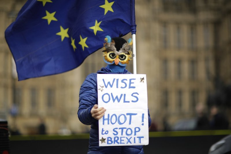 Remain in the European Union supporter in front of the Houses of Parliament in London on Tuesday, Feb 12. — AP