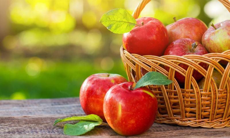 کہا جاتا ہے کہ ایک سیب روزانہ کھانے کی عادت ڈاکٹر کو دور رکھتی ہے— شٹر اسٹاک فوٹو