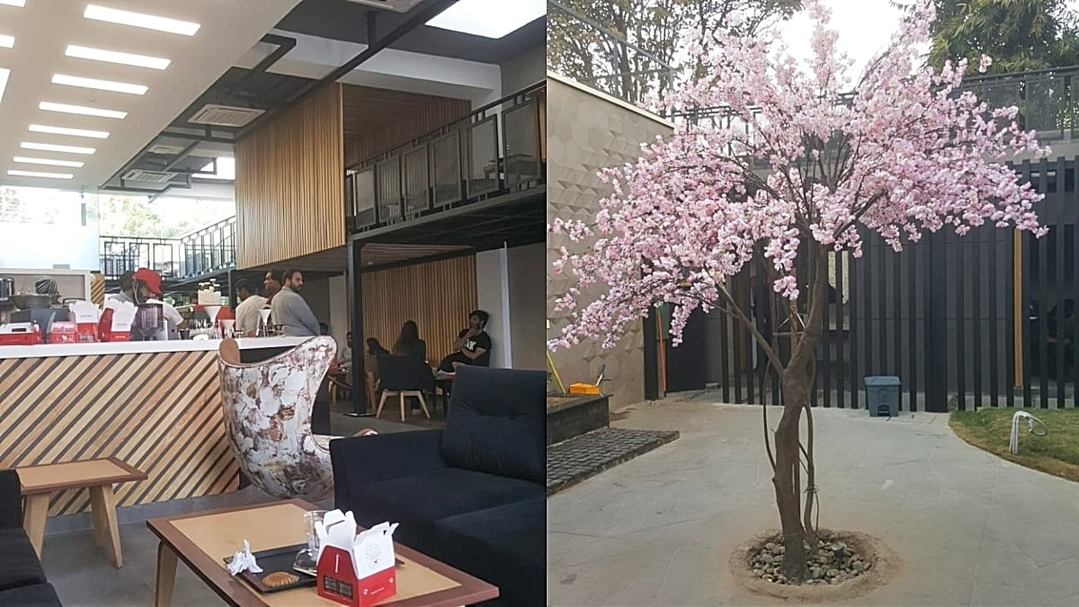 Uncle Tetsu is spacious with a cherry blossom tree outside for the Japanese touch