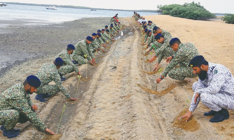 KARACHI: Navy officers plant saplings during its Mangroves Plantation Campaign at Port Qasim on Monday.—INP