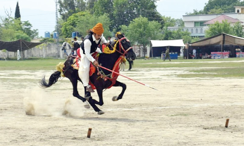 A horseman takes part in a tent pegging competition during Jashn-i-Hazara festival in Haripur on Saturday. — Dawn