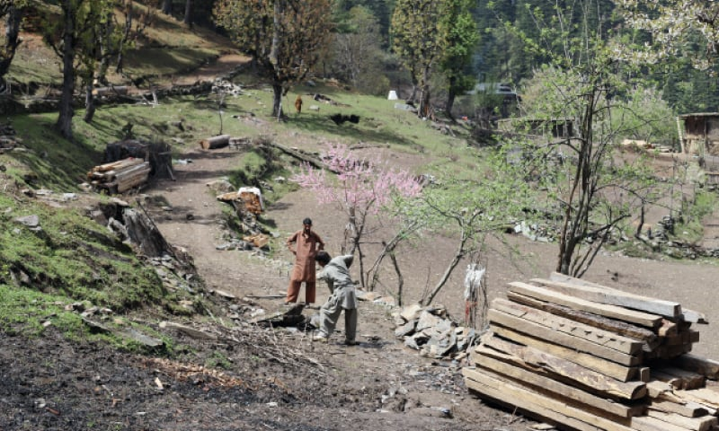 Workers at another construction site. Rising tourism in the Neelum Valley has increased the demand for housing.