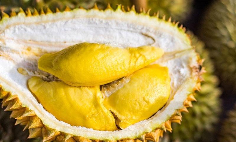 جنوب مشرقی ایشیا کا یہ پھل اپنی بو کی وجہ سے شہرت رکھتا ہے — شٹر اسٹاک فوٹو