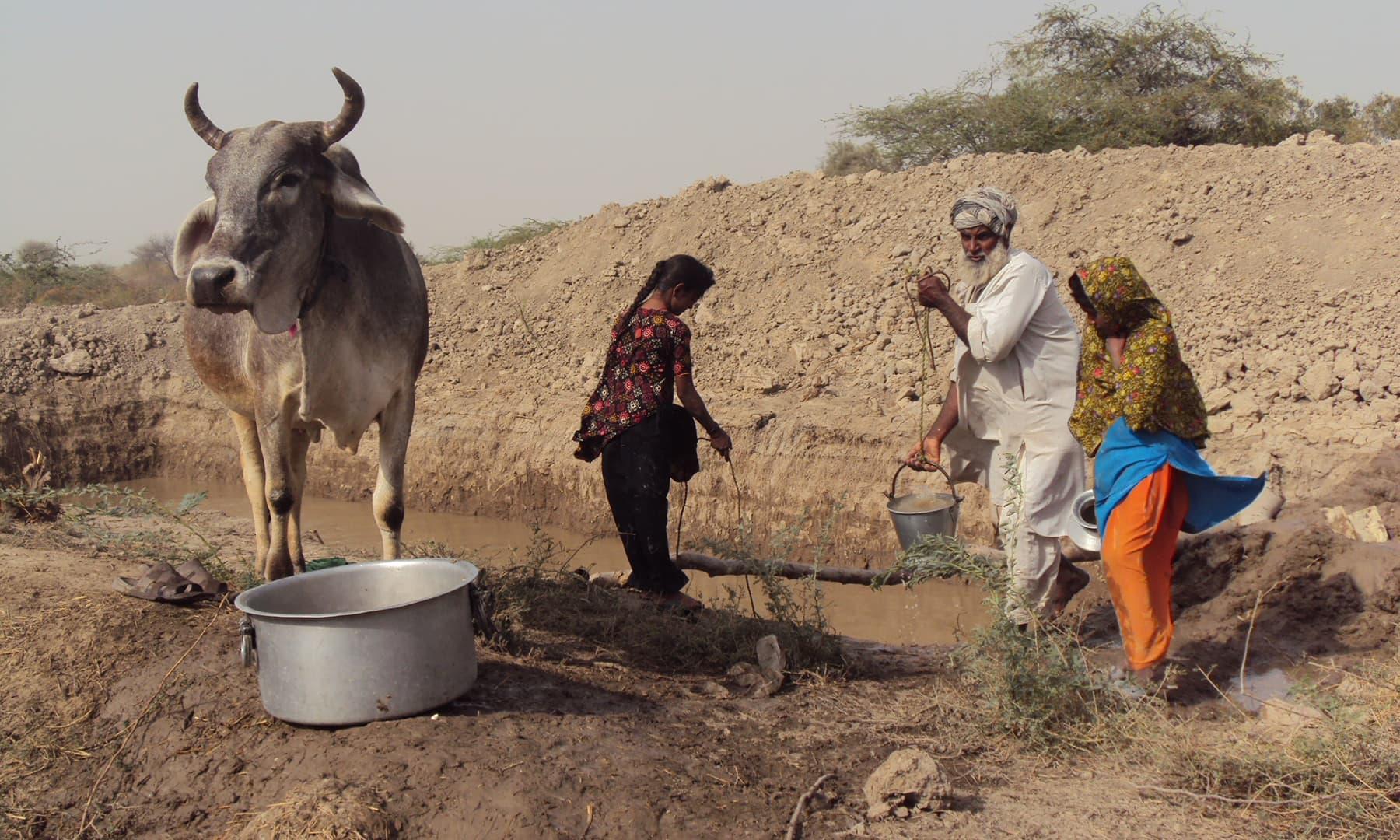 کنویں سے پانی بھرا جا رہا ہے—تصویر ابوبکر شیخ