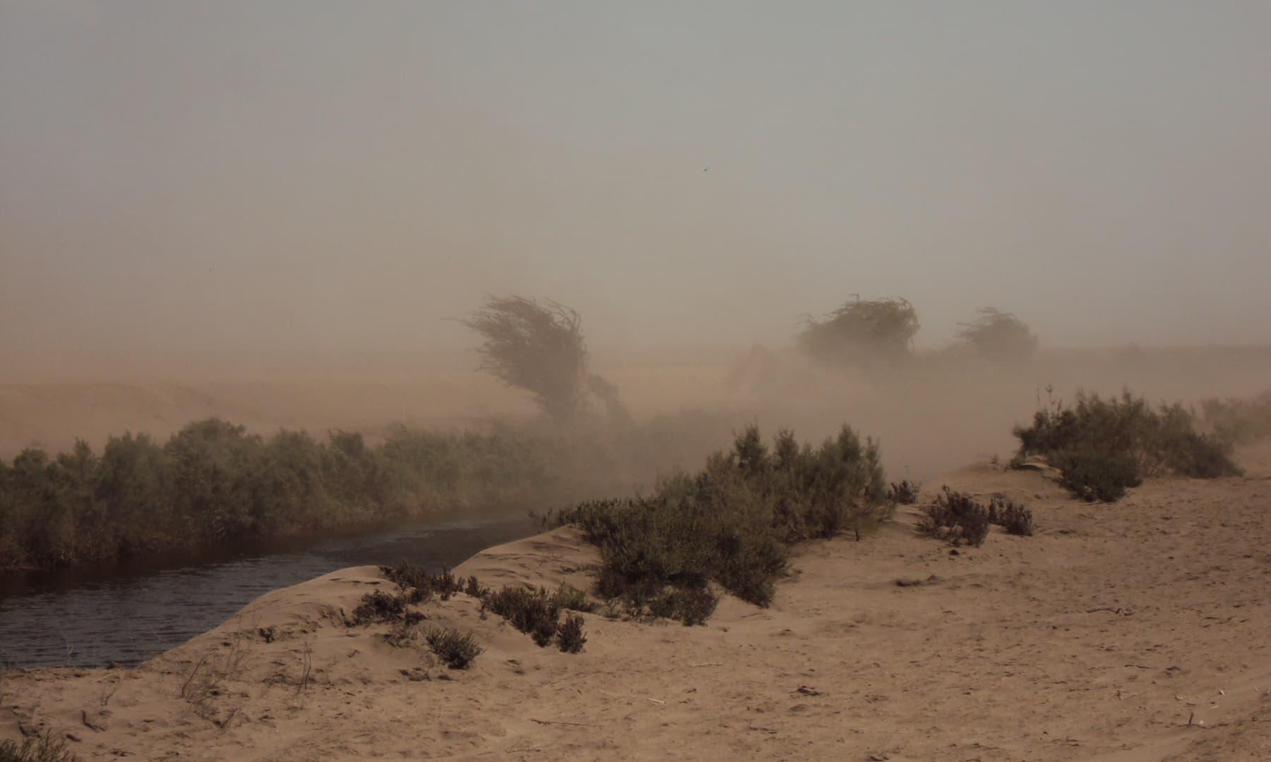 مٹی اڑاتی تیز ہوا—تصویر ابوبکر شیخ