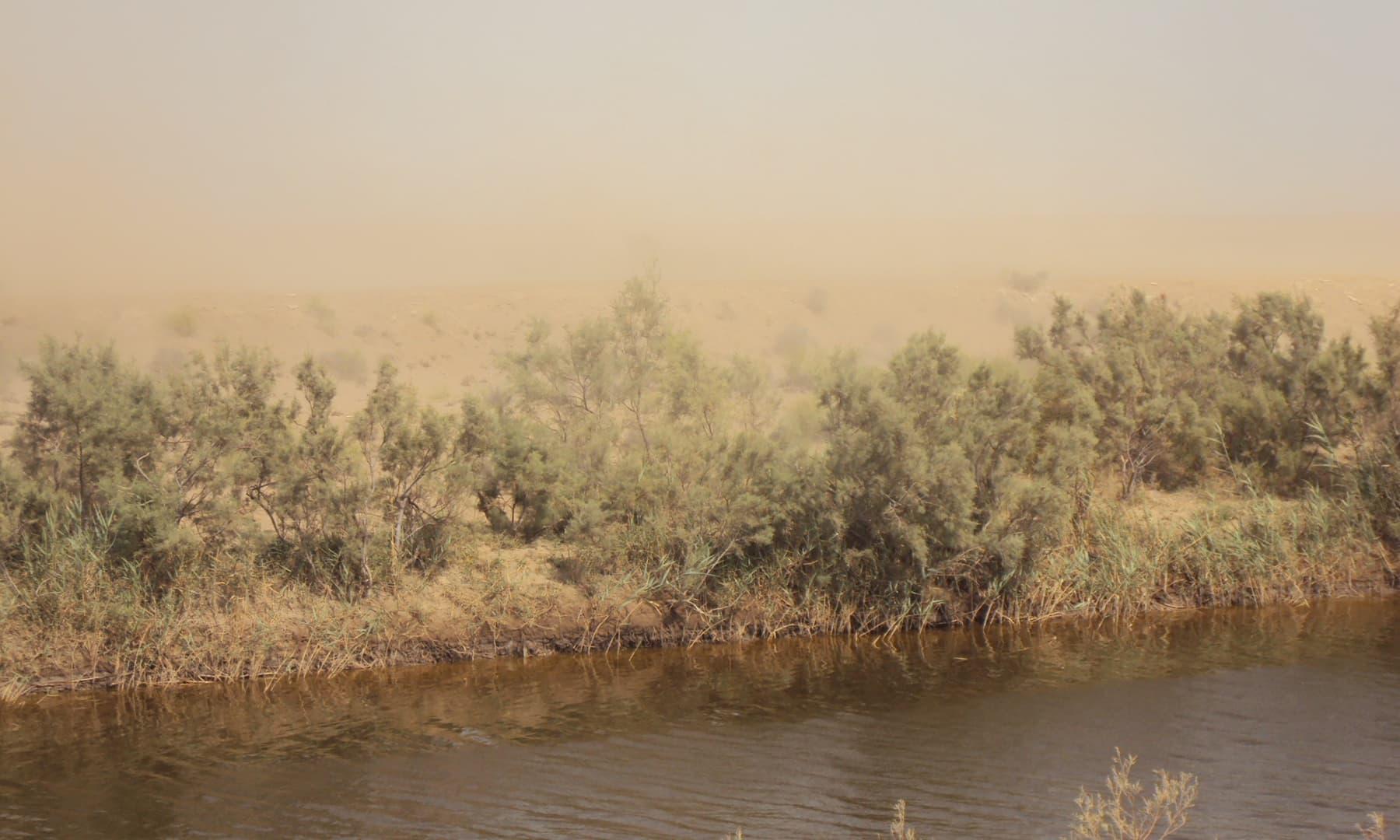 نریڑی اور مٹی اڑاتی تیز ہوائیں—تصویر ابوبکر شیخ