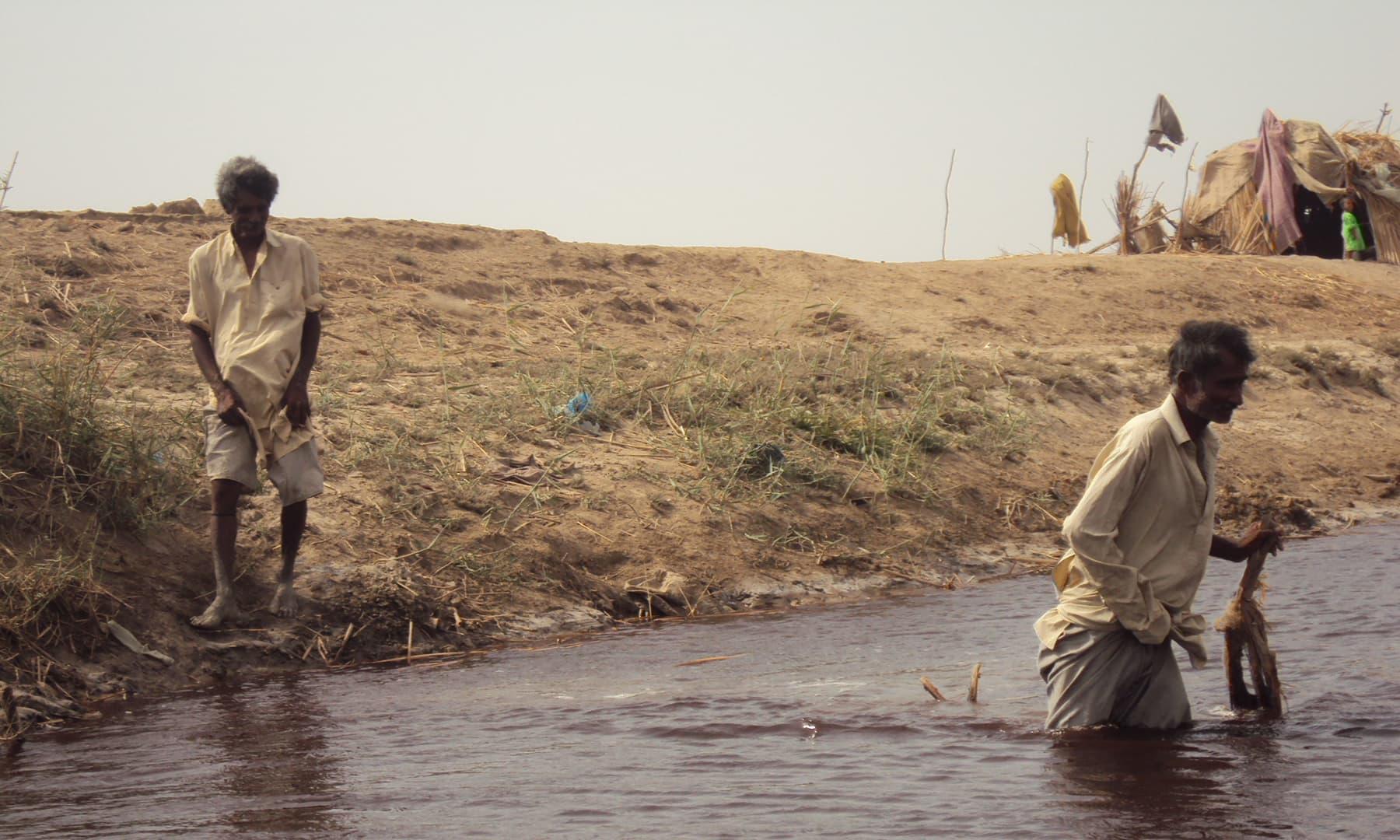 نریڑی جھیل کا ایک حصہ اب بھی بارشوں کے موسم میں پانی سے بھر جاتا ہے اور جنوری فروری تک مقامی مچھیروں کا گزرسفر ہوجاتا ہے—تصویر ابوبکر شیخ