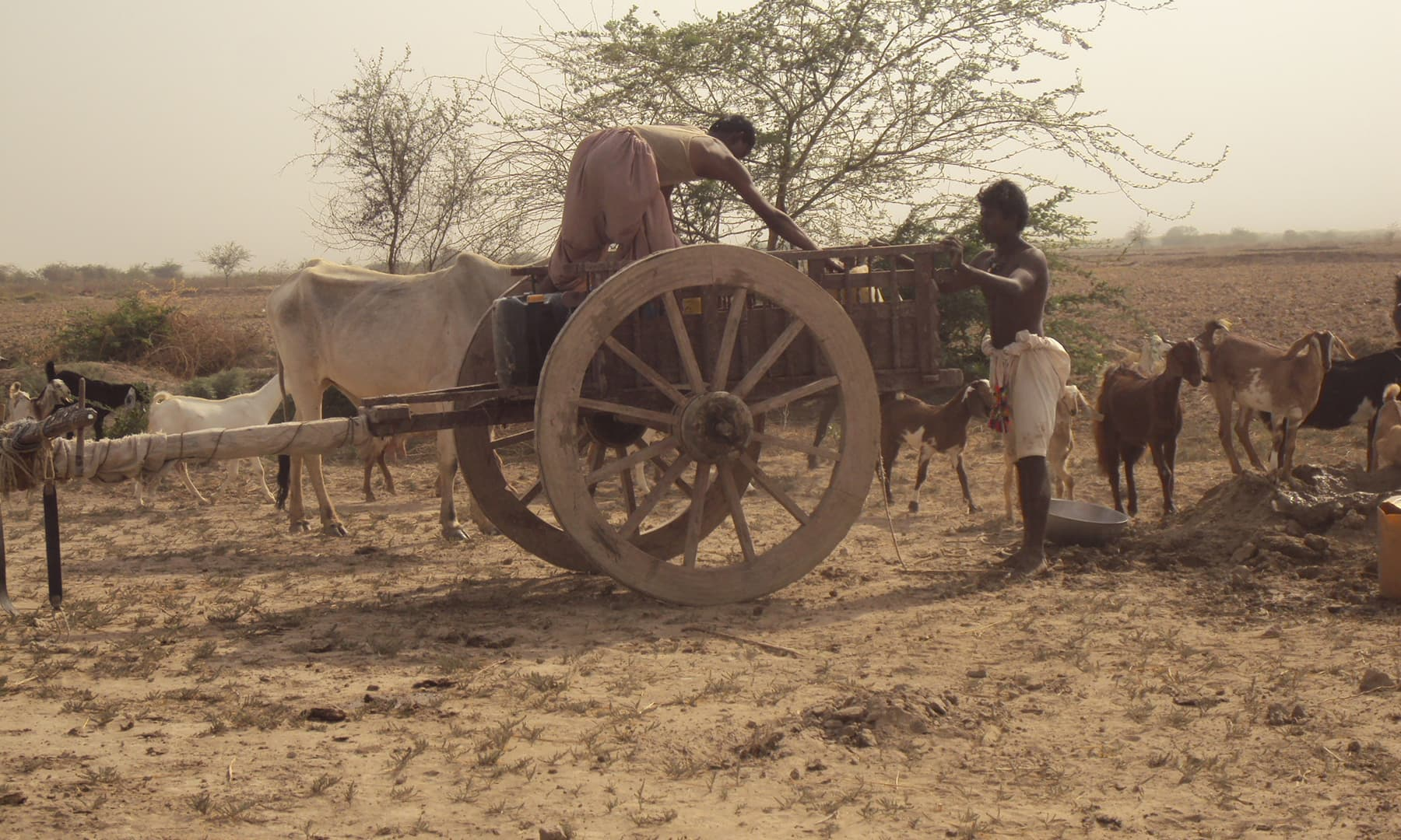 پانی کے حصول کے لیے کنویں کھودے جاتے ہیں—تصویر ابوبکر شیخ