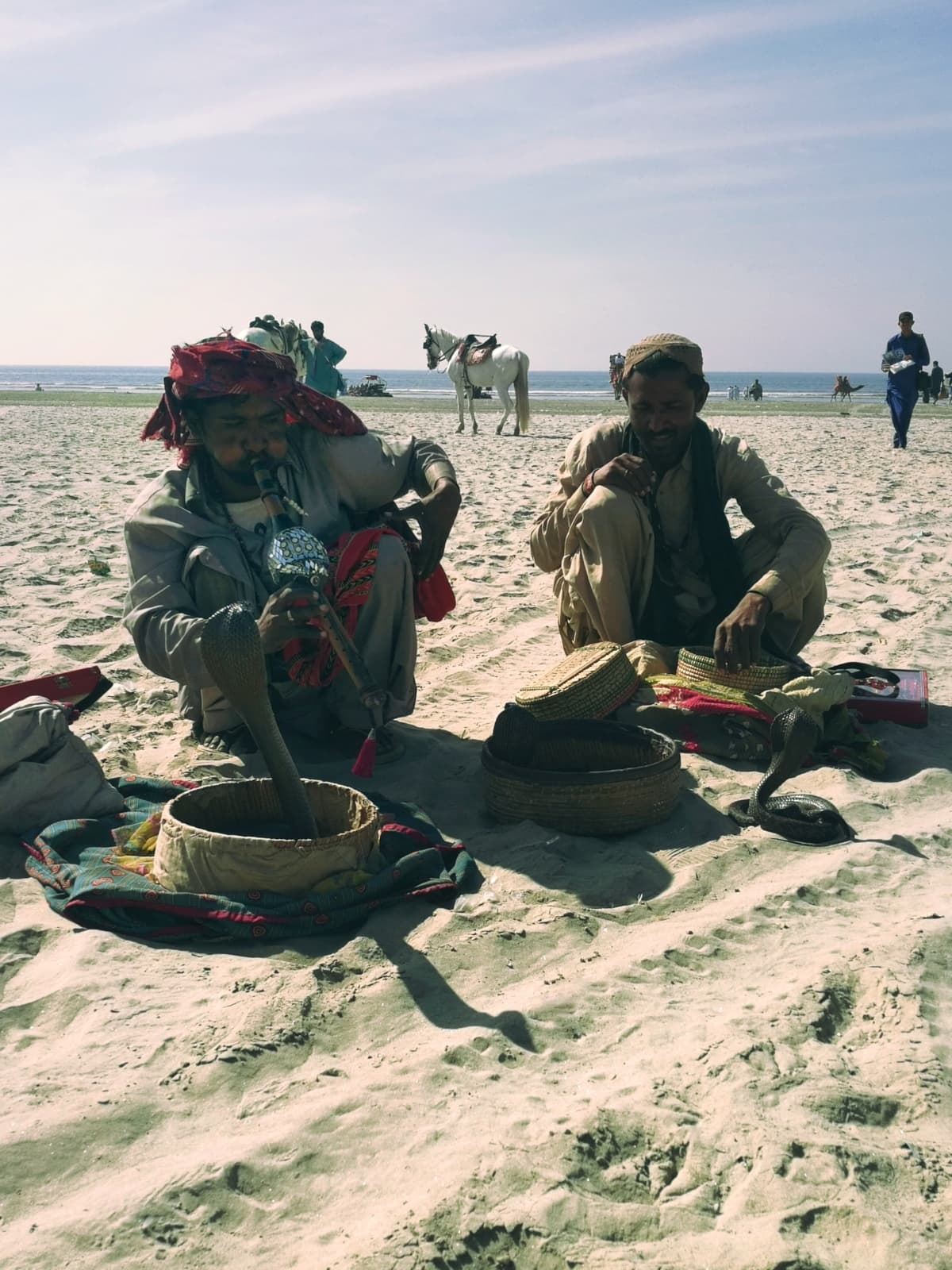 Snake-charmers at Sea View