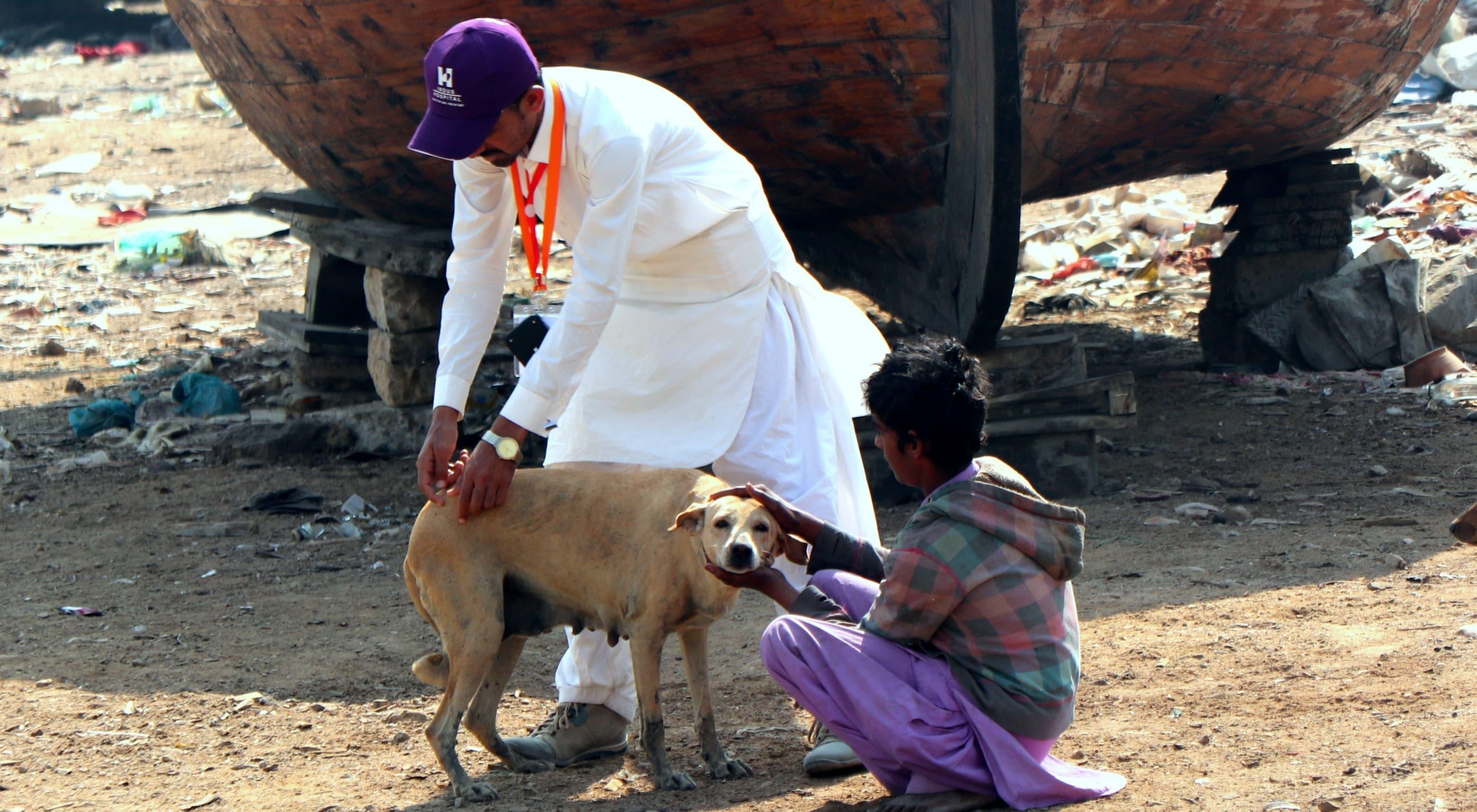 آر کے ایف کا اہلکار کتے کو ویکسین دے رہا ہے — فوٹو: انڈس ہسپتال