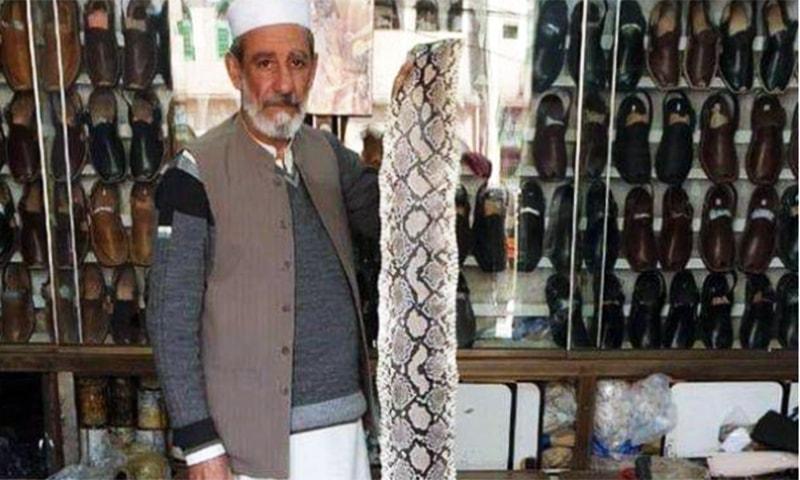 Nooruddin Shinwari showing a piece of snakeskin at his shop. — Photo courtesy of Zahid Imdad
