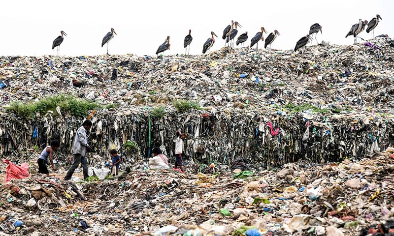India's tallest rubbish mountain to rise higher than Taj Mahal