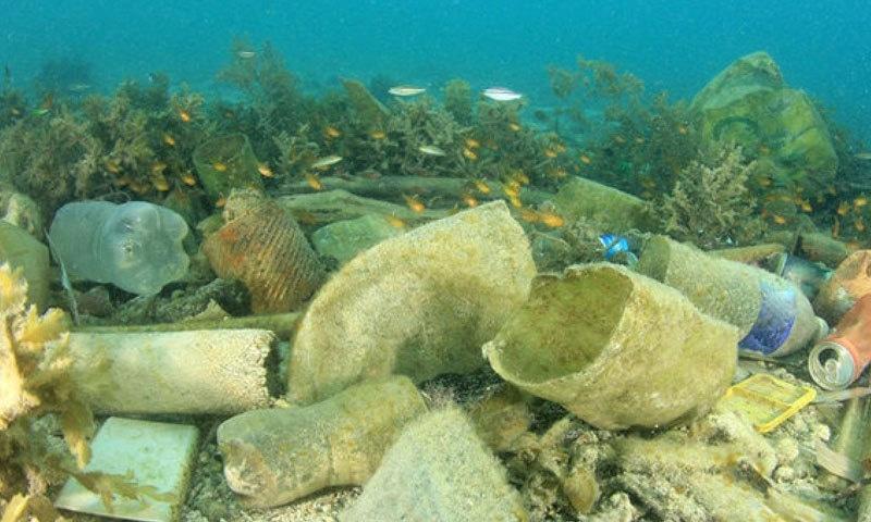 سمندر کی گہرائی میں بھی پلاسٹک موجود ہے، رپورٹ—فوٹو: شٹر اسٹاک